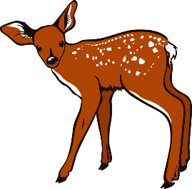 fawn on